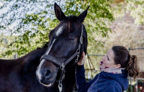 Nadin Fischer und Pferd Lero mit blauem Auge